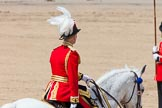 The Colonel's Review 2013. Horse Guards Parade, Westminster, London SW1,  United Kingdom, on 08 June 2013 at 12:09, image #849