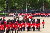 The Colonel's Review 2013. Horse Guards Parade, Westminster, London SW1,  United Kingdom, on 08 June 2013 at 12:10, image #854