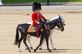 The Colonel's Review 2013. Horse Guards Parade, Westminster, London SW1,  United Kingdom, on 08 June 2013 at 12:10, image #858