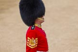 Major General's Review 2013: WO1 Garrison Sergeant Major William 'Bill' Mott OBE MVO, Welsh Guards.. Horse Guards Parade, Westminster, London SW1,  United Kingdom, on 01 June 2013 at 10:05, image #27