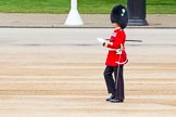 Major General's Review 2013: Garrison Sergeant Major WO1 Bill Mott, Welsh Guards, inspecting the parade ground.. Horse Guards Parade, Westminster, London SW1,  United Kingdom, on 01 June 2013 at 10:19, image #66