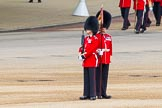 Major General's Review 2013: The Keepers of the Ground are in position.. Horse Guards Parade, Westminster, London SW1,  United Kingdom, on 01 June 2013 at 10:23, image #71