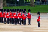 Major General's Review 2013: No. 4 Guard, Nijmegen Company Grenadier Guards, moving into position, lead by Colour Sergeant J Bennet.. Horse Guards Parade, Westminster, London SW1,  United Kingdom, on 01 June 2013 at 10:27, image #98