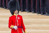 Major General's Review 2013: Captain P W Foster, No. 5 Guard, F Company Scots Guards.. Horse Guards Parade, Westminster, London SW1,  United Kingdom, on 01 June 2013 at 10:27, image #99