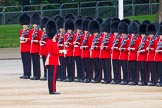 Major General's Review 2013: Lieutenant H C Cartwright with No. 4 Guard,Nijmegen Company Grenadier Guards.. Horse Guards Parade, Westminster, London SW1,  United Kingdom, on 01 June 2013 at 10:29, image #108
