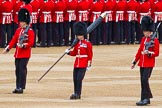 Major General's Review 2013: The Colour Party has reached their position on Horse Guards Parade - Colour Sergeant R J Heath, Welsh Guards, carrying the Colour, and the two sentries.. Horse Guards Parade, Westminster, London SW1,  United Kingdom, on 01 June 2013 at 10:31, image #118