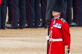 Major General's Review 2013: The Colour Party has reached their position on Horse Guards Parade - Colour Sergeant R J Heath, Welsh Guards, carrying the Colour.. Horse Guards Parade, Westminster, London SW1,  United Kingdom, on 01 June 2013 at 10:31, image #119