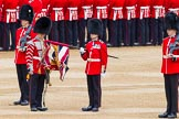 Major General's Review 2013: The uncasing of the Colour.. Horse Guards Parade, Westminster, London SW1,  United Kingdom, on 01 June 2013 at 10:32, image #128