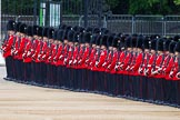 Major General's Review 2013: No.3 Guard, 1st Battalion Welsh Guards.. Horse Guards Parade, Westminster, London SW1,  United Kingdom, on 01 June 2013 at 10:34, image #141