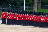 Major General's Review 2013: No.4 Guard, Nijmegan company Grenadier Guards.. Horse Guards Parade, Westminster, London SW1,  United Kingdom, on 01 June 2013 at 10:34, image #142