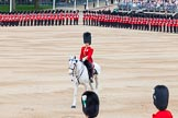 Major General's Review 2013: The Adjutant of the Parade, Captain C J P Davies, Welsh Guards.. Horse Guards Parade, Westminster, London SW1,  United Kingdom, on 01 June 2013 at 10:39, image #162