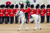 Major General's Review 2013: The Field Officer in Brigade Waiting, Lieutenant Colonel D L W Bossi, Welsh Guards.. Horse Guards Parade, Westminster, London SW1,  United Kingdom, on 01 June 2013 at 10:43, image #181