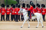 Major General's Review 2013: The Field Officer in Brigade Waiting, Lieutenant Colonel D L W Bossi, Welsh Guards.. Horse Guards Parade, Westminster, London SW1,  United Kingdom, on 01 June 2013 at 10:43, image #182