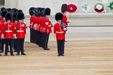 Major General's Review 2013: No. 3 Guard, 1st Battalion Welsh Guards, at the gap in the line for members of the Royal Family.. Horse Guards Parade, Westminster, London SW1,  United Kingdom, on 01 June 2013 at 10:44, image #188