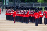 Major General's Review 2013: No. 3 Guard, 1st Battalion Welsh Guards, at the gap in the line for members of the Royal Family.. Horse Guards Parade, Westminster, London SW1,  United Kingdom, on 01 June 2013 at 10:44, image #189