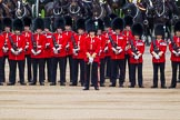 Major General's Review 2013: No. 1 Guard, 1 st Battalion Welsh Guards with Captain F O Lloyd-George.. Horse Guards Parade, Westminster, London SW1,  United Kingdom, on 01 June 2013 at 10:46, image #191