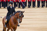 Major General's Review 2013: Two grooms are leading the line of carriages that will carry members of the Royal Family across Horse Guards Parade.. Horse Guards Parade, Westminster, London SW1,  United Kingdom, on 01 June 2013 at 10:51, image #204