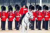 Major General's Review 2013: The Field Officer in Brigade Waiting, Lieutenant Colonel Dino Bossi, Welsh Guards in the center of the line.. Horse Guards Parade, Westminster, London SW1,  United Kingdom, on 01 June 2013 at 10:55, image #220