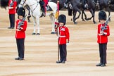 Major General's Review 2013: The Colour is now uncased, and the two sentries patrol to the left and right, to protect the Colour.. Horse Guards Parade, Westminster, London SW1,  United Kingdom, on 01 June 2013 at 10:55, image #221