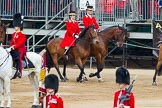 Major General's Review 2013: Two Grooms, The Royal Household.. Horse Guards Parade, Westminster, London SW1,  United Kingdom, on 01 June 2013 at 10:59, image #254
