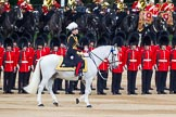Major General's Review 2013: Major General Commanding the Household Division and General Officer Commanding London District, Major George Norton during the Inspection of the Line.. Horse Guards Parade, Westminster, London SW1,  United Kingdom, on 01 June 2013 at 11:03, image #290