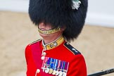 Major General's Review 2013: Close-up of a Welsh Guards officer, acting ass an usher at the event.. Horse Guards Parade, Westminster, London SW1,  United Kingdom, on 01 June 2013 at 11:03, image #298