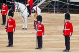 Major General's Review 2013: About to hand over the Colour - Colour Sergeant R J Heath, Welsh Guards, with the two (unfortunately unnamed) sentries.. Horse Guards Parade, Westminster, London SW1,  United Kingdom, on 01 June 2013 at 11:09, image #321