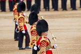 Major General's Review 2013: The Drum Majors-Stephen Staite, D P Thomas, M J Betts, Neill Lawman, and Tony Taylor.. Horse Guards Parade, Westminster, London SW1,  United Kingdom, on 01 June 2013 at 11:12, image #344