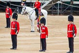 Major General's Review 2013: About to hand over the Colour - Colour Sergeant R J Heath, Welsh Guards, with the two (unfortunately unnamed) sentries.. Horse Guards Parade, Westminster, London SW1,  United Kingdom, on 01 June 2013 at 11:15, image #370