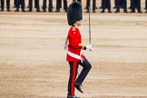 Major General's Review 2013: The Ensign, Second Lieutenant Joel Dinwiddle.. Horse Guards Parade, Westminster, London SW1,  United Kingdom, on 01 June 2013 at 11:16, image #378