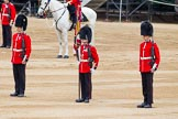 Major General's Review 2013: About to hand over the Colour - Colour Sergeant R J Heath, Welsh Guards, with the two (unfortunately unnamed) sentries.. Horse Guards Parade, Westminster, London SW1,  United Kingdom, on 01 June 2013 at 11:17, image #383