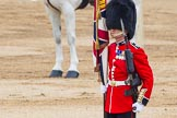 Major General's Review 2013: Colour Sergeant R J Heath, Welsh Guards.. Horse Guards Parade, Westminster, London SW1,  United Kingdom, on 01 June 2013 at 11:17, image #384