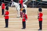 Major General's Review 2013: Colour Sergeant R J Heath, Welsh Guards, with the two (unfortunately unnamed) sentries.. Horse Guards Parade, Westminster, London SW1,  United Kingdom, on 01 June 2013 at 11:18, image #386