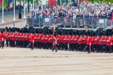 Major General's Review 2013: The Escort to the Colour troops the Colour past No. 6 Guard, No.7 Company Coldstream Guards.. Horse Guards Parade, Westminster, London SW1,  United Kingdom, on 01 June 2013 at 11:23, image #423