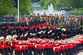 Major General's Review 2013: No. 1 Guard (Escort to the Colour),1st Battalion Welsh Guards, at the begin of the March Past.. Horse Guards Parade, Westminster, London SW1,  United Kingdom, on 01 June 2013 at 11:30, image #456