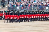Major General's Review 2013: Welsh Guards during the March Past.. Horse Guards Parade, Westminster, London SW1,  United Kingdom, on 01 June 2013 at 11:38, image #518