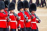 Major General's Review 2013: The March Past in Quick Time-Welsh Guards.. Horse Guards Parade, Westminster, London SW1,  United Kingdom, on 01 June 2013 at 11:42, image #537