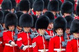 Major General's Review 2013: The March Past in Quick Time-Welsh Guards.. Horse Guards Parade, Westminster, London SW1,  United Kingdom, on 01 June 2013 at 11:42, image #540
