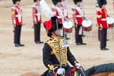 Major General's Review 2013: The Ride Past - the King's Troop Royal Horse Artillery. Here the Commanding Officer, Major Mark Edward, Royal Horse Artillery.. Horse Guards Parade, Westminster, London SW1,  United Kingdom, on 01 June 2013 at 11:51, image #590