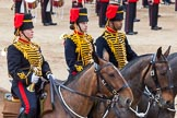 Major General's Review 2013: The Ride Past - the King's Troop Royal Horse Artillery.. Horse Guards Parade, Westminster, London SW1,  United Kingdom, on 01 June 2013 at 11:51, image #596