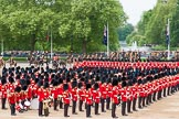 Major General's Review 2013: The Ride Past - the King's Troop Royal Horse Artillery.. Horse Guards Parade, Westminster, London SW1,  United Kingdom, on 01 June 2013 at 11:50, image #575
