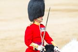 Major General's Review 2013: The Field Officer in Brigade Waiting, Lieutenant Colonel Dino Bossi, Welsh Guards, rides towards the dais to ask HM The Queen's permission to march off.. Horse Guards Parade, Westminster, London SW1,  United Kingdom, on 01 June 2013 at 12:05, image #698