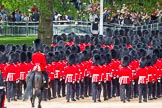 Major General's Review 2013: The March Off - lines of scarlet and black as the guardsmen, with their bearskins, are marching up Horse Guards Road towards The Mall.. Horse Guards Parade, Westminster, London SW1,  United Kingdom, on 01 June 2013 at 12:10, image #730
