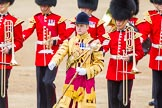 Trooping the Colour 2013: Drum Major D P Thomas, Grenadier Guards, leading the Band of the Grenadier Guards onto Horse Guards Parade.. Horse Guards Parade, Westminster, London SW1,  United Kingdom, on 15 June 2013 at 10:29, image #97