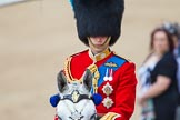 Trooping the Colour 2013: Close-up of HRH The Duke of Cambridge, Colonel Irish Guards, on horseback during the Inspection of the line.. Horse Guards Parade, Westminster, London SW1,  United Kingdom, on 15 June 2013 at 11:02, image #303
