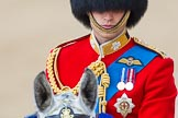 Trooping the Colour 2013: Close-up of HRH The Duke of Cambridge, Colonel Irish Guards, on horseback during the Inspection of the line.. Horse Guards Parade, Westminster, London SW1,  United Kingdom, on 15 June 2013 at 11:02, image #304