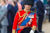 Trooping the Colour 2013: Close-up of HRH The Prince of Wales, Colonel Welsh Guards, on horseback during the Inspection of the line.. Horse Guards Parade, Westminster, London SW1,  United Kingdom, on 15 June 2013 at 11:02, image #306