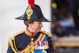 Trooping the Colour 2013: Close-up of HRH The Princess Royal, Colonel The Blues and Royals (Royal Horse Guards and 1st Dragoons), smiling, on horseback during the Inspection of the line.. Horse Guards Parade, Westminster, London SW1,  United Kingdom, on 15 June 2013 at 11:02, image #312