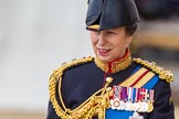 Trooping the Colour 2013: Close-up of HRH The Princess Royal, Colonel The Blues and Royals (Royal Horse Guards and 1st Dragoons), smiling, on horseback during the Inspection of the line.. Horse Guards Parade, Westminster, London SW1,  United Kingdom, on 15 June 2013 at 11:02, image #314
