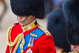 Trooping the Colour 2013: Close-up of HRH The Duke of Cambridge, Colonel Irish Guards, on horseback during the Inspection of the line.. Horse Guards Parade, Westminster, London SW1,  United Kingdom, on 15 June 2013 at 11:02, image #315